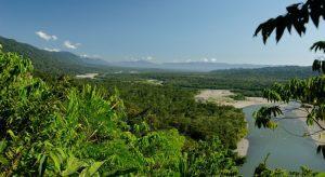 Conocer Parque Nacional del Manu, Perú